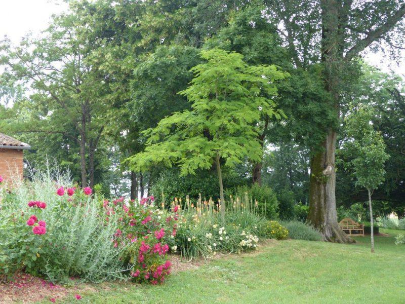 Le Parc en fleurs…