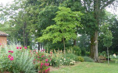 Le Parc en fleurs